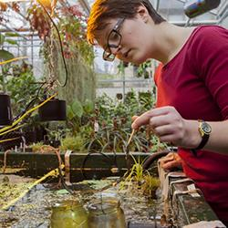 Read more at: The trainee horticulturalist who believes gardens are for sharing